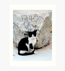 Grecian Kitty Art Print