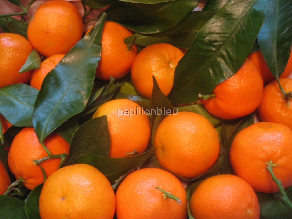 Clementines by Pamela Jayne Smith