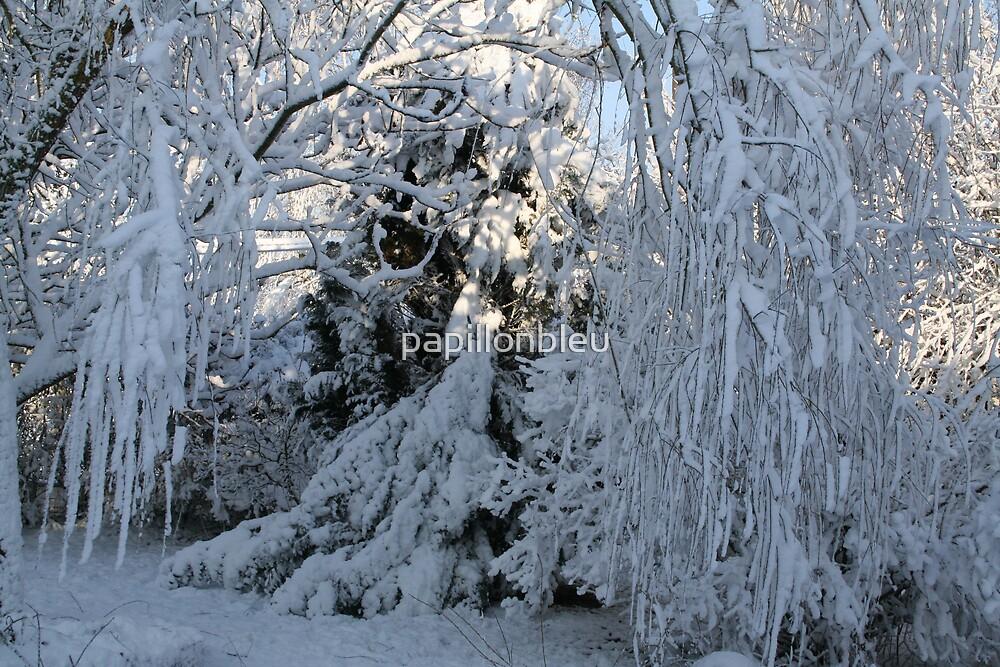 Snow Trees by Pamela Jayne Smith