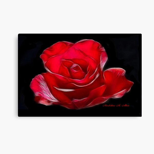 RED~ROSE Canvas Print