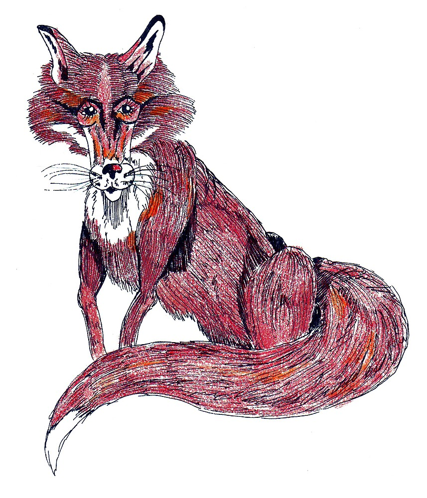 Fox by Jeffrey Neumann