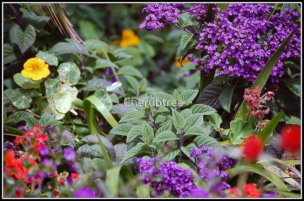 Butterfly Treasure by Cherubtree