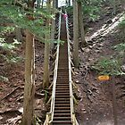Jacobs Ladder (175 steps) - Truro Nova Scotia by AnnDixon