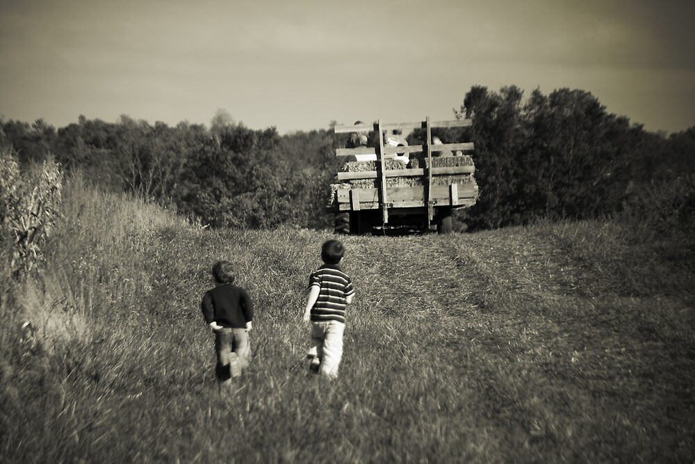 Missed the Wagon by MClementReilly