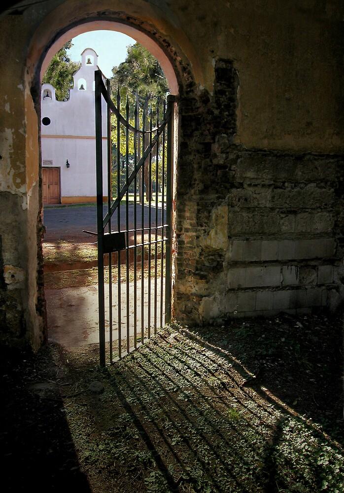 a step to freedom... by Silvia Marmori