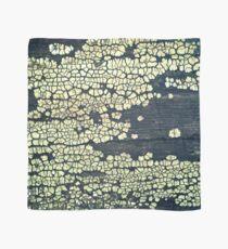 Crust Fungus Scarf