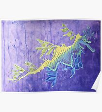 Olaf, the leafy seadragon Poster