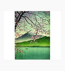 Mount Fuji & Cherry Blossoms Photographic Print