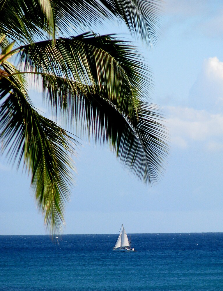 Sail Away by Stephanie  Newbold