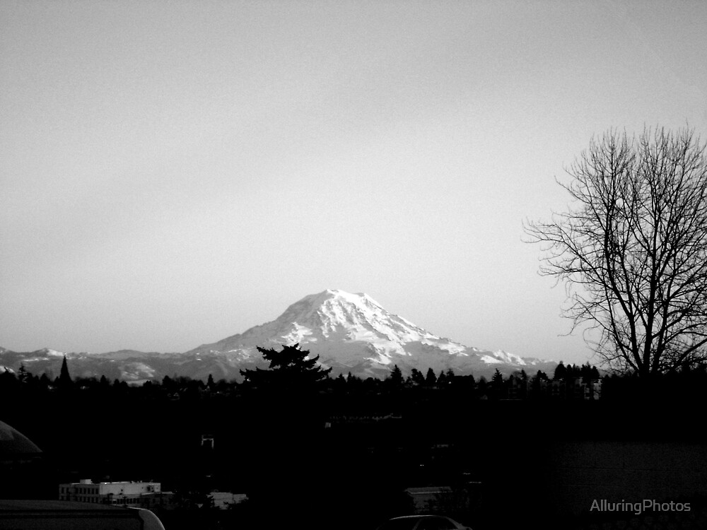 Mt. Rainer by AlluringPhotos