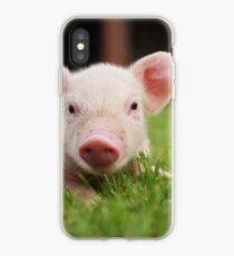 Little Baby Piglet Pig iPhone Case