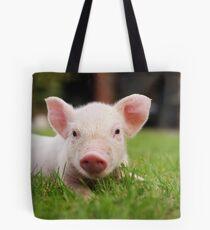 Kleines Baby Ferkel Schwein Tote Bag