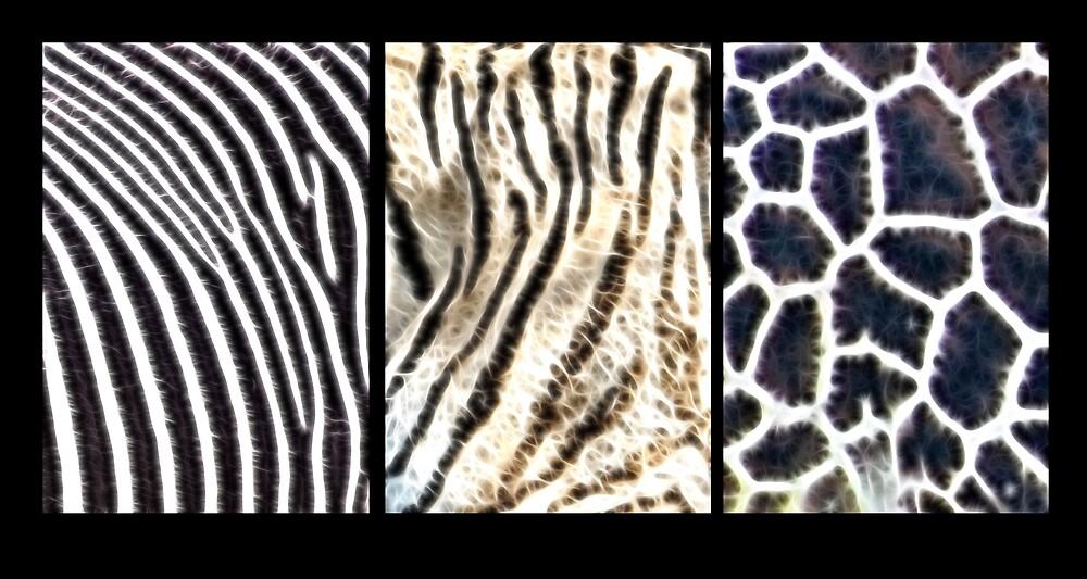 Fractal Fur by Lisa Kent