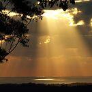 """Sun meets Ocean"" by debsphotos"