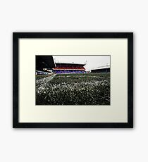 Grass Roots Are Forever Green Framed Print