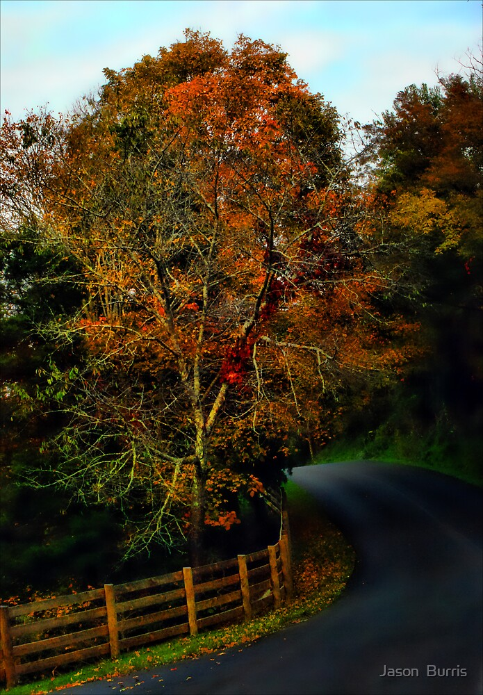 Just along the road by Jason  Burris