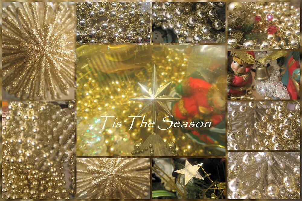 Christmas Season by Melissa Park