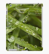 Water droplets on green grass iPad Case/Skin