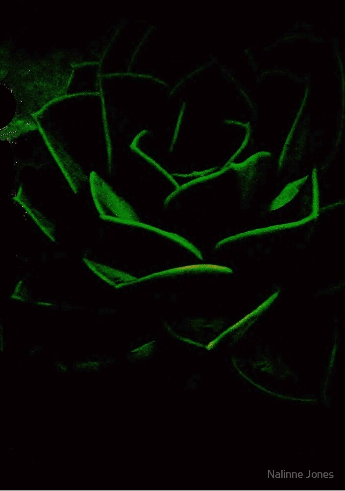 Succulent in the Shadows by Nalinne Jones