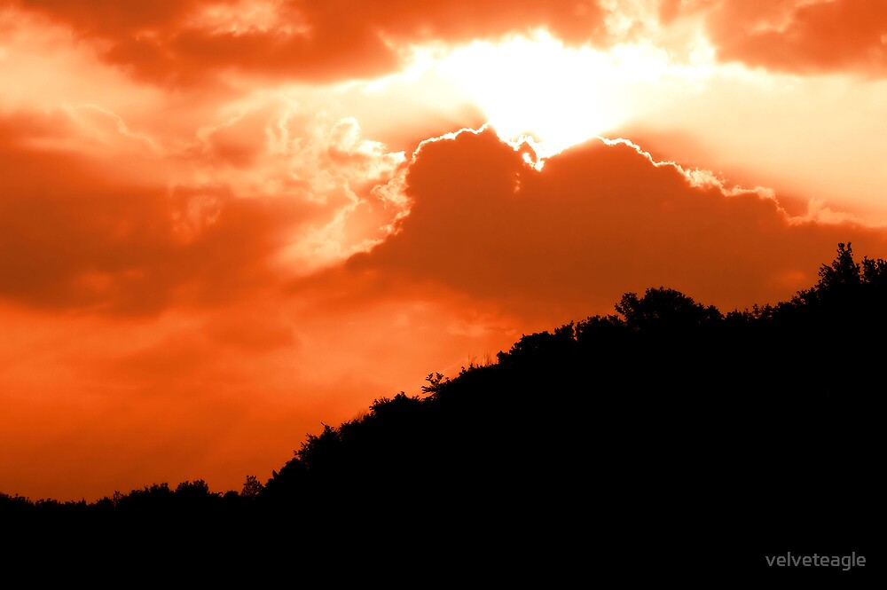 Morning Light Embrace by velveteagle