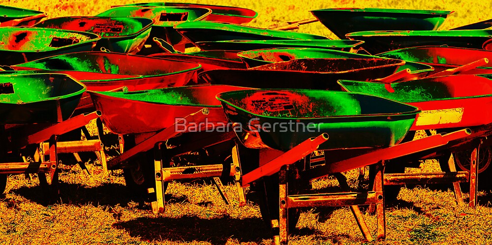 Wheelbarrels by Barbara Gerstner