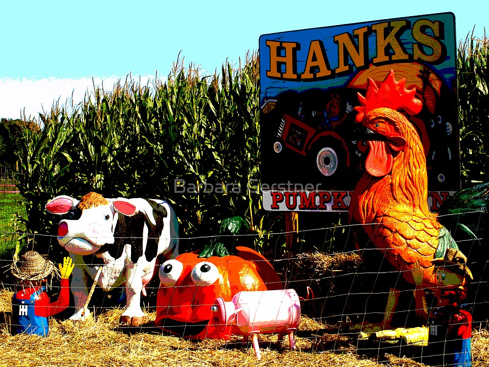 Hank's Pumpkintown by Barbara Gerstner