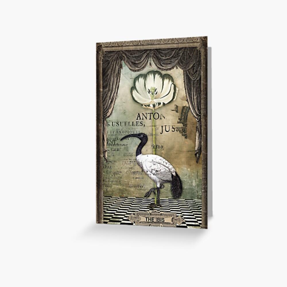 The Ibis Greeting Card