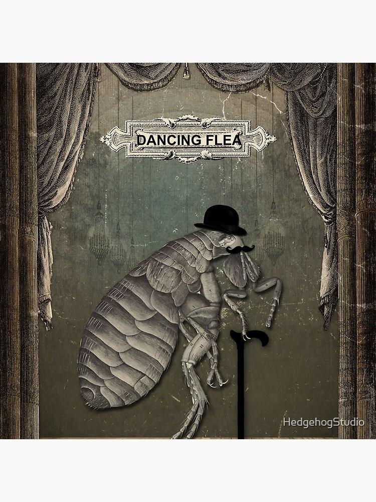The Dancing Flea by HedgehogStudio