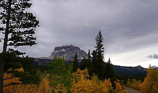 Fall at Chief Mountain, Northside by Tracey Vivar