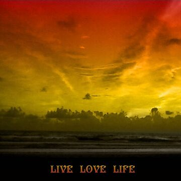 live love life by TheRandom