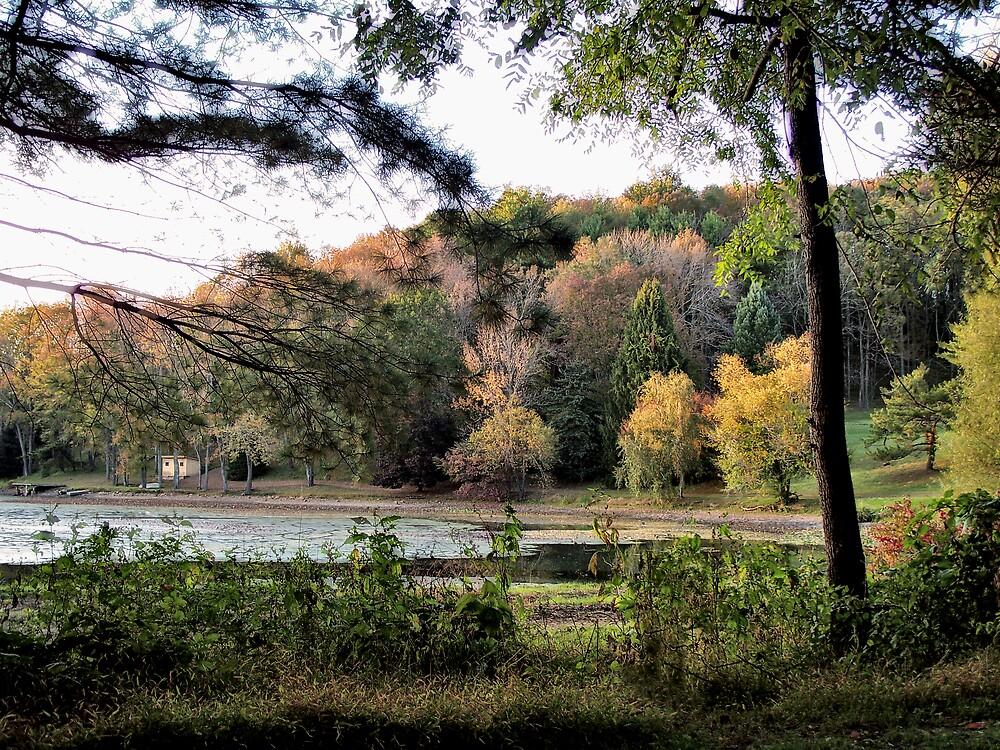 Fall at the Lake by Judi Taylor