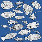 Fish by RebeccaMcGoran