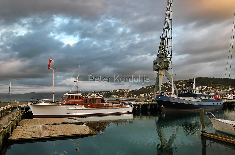 The Crane, Queens Wharf by Peter Kurdulija