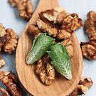 Lettuce & Walnuts on a Wooden Spoon by Stephanie KILGAST
