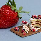 Tiny Cake & Huge Strawberry by Stephanie KILGAST