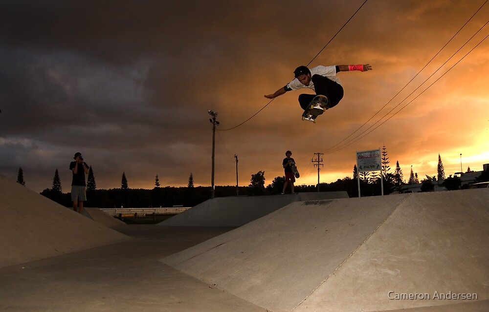Foster ollie. by Cameron Andersen