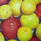 Hawaiian Passion Fruit by joeyartist