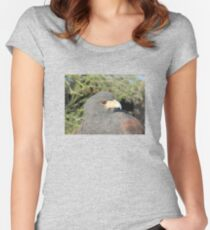 Harris Hawk Close-up Women's Fitted Scoop T-Shirt