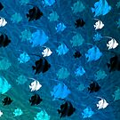 «Angelfish shadows» de Paco Herrero