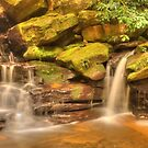 Somersby Cascade by Michael Matthews