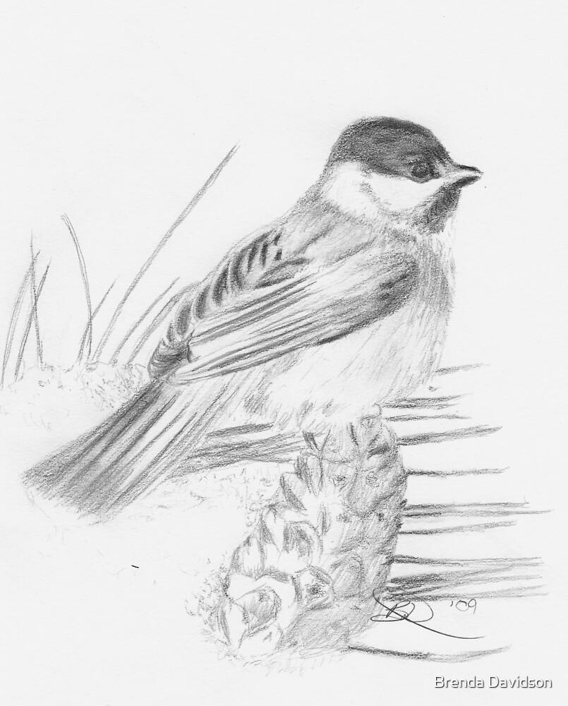 Chickadee by Brenda Davidson