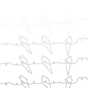 Wire of Birds (White) by DiseasedBones