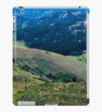 Landscape 7 iPad Case/Skin