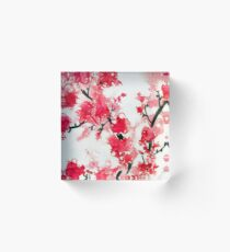 Cherry Blossoms III Acrylic Block