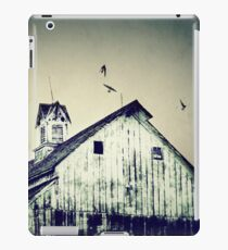 Unique Cupola iPad Case/Skin