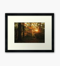 Catching Fire Framed Print