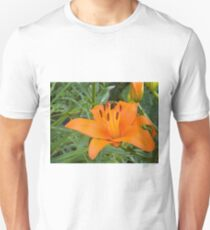 Orange Lily in the garden 2 T-Shirt
