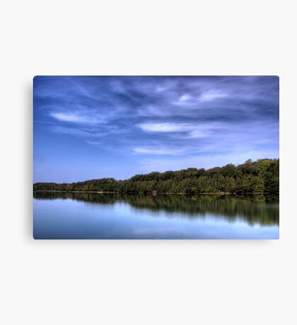 Nice Day for a Walk Canvas Print