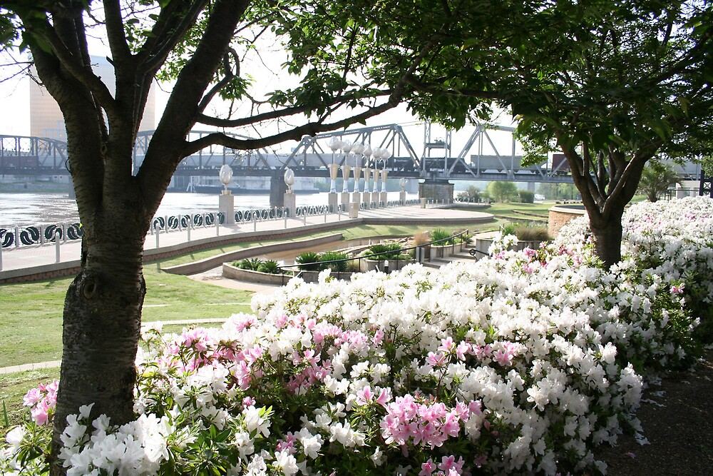 The Riverfront, Shreveport by Terry Walker