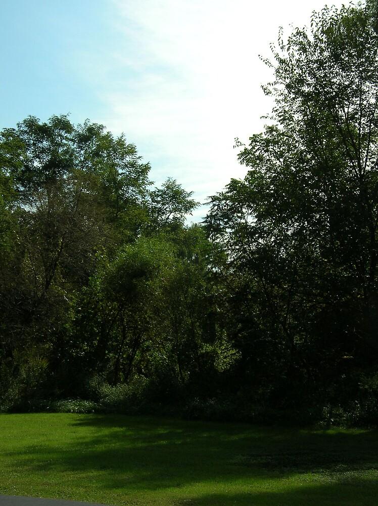 Rising Sun on a Sunny Sunday by yankeegrl99